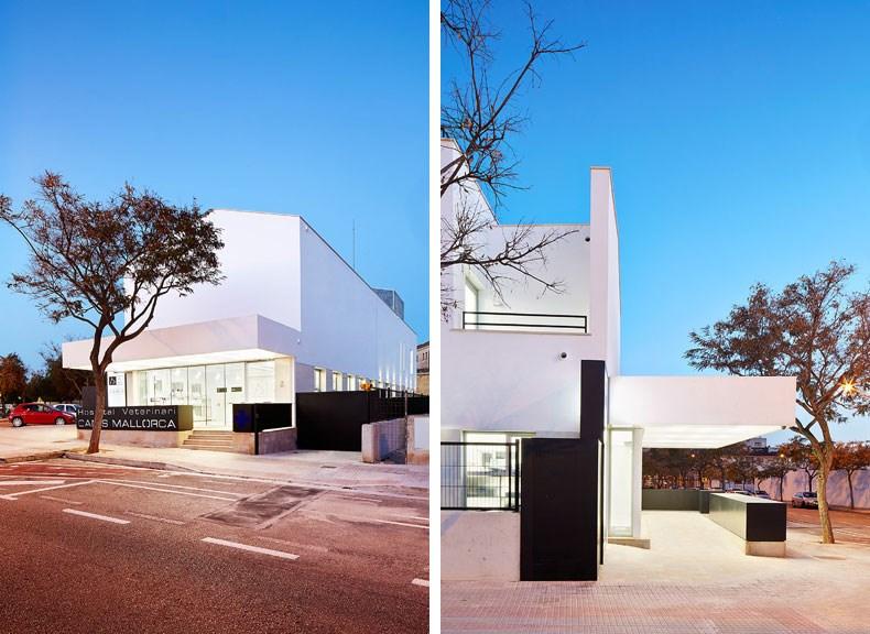 西班牙马略卡兽医院设计6