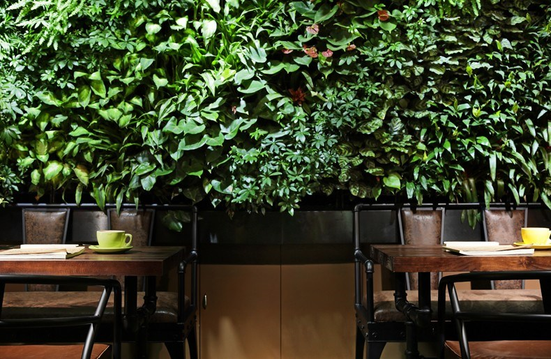 WO屋花园咖啡设计9.jpg